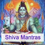 Mahamantra chanted by Janavallabha Das Wloka and an ayurveda training group