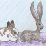 Silly Bunny- a story and guided meditation