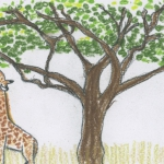 Gentle Giraffes- a story and guided meditation for kids
