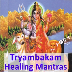 Maha Mrityunjaya Om Tryambakam with Jasmin and Kai