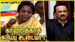 காவிரிக்காக கருப்பு சட்டையா ? : Tamilisai criticize Stalin's black shirt | Cauvery Issue | Latest