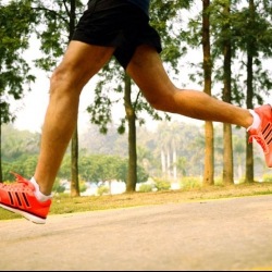 MoveMint: Get Ready, Steady, and Go Run #2