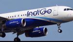 எஞ்ஜின் கோளாறு - 84 விமானங்களை இண்டிகோ ரத்து செய்தது | IndiGo cancels 84 flights amid engine issues