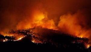 போர்ச்சுகல் ,ஸ்பெயினில் ஏற்பட்ட காட்டுத்தீக்கு 30 பேர் பலி | 30 killed as wildfires rage in Portugal and Spain