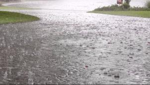 கர்நாடகவில் பெய்த மழைக்கு 7 பேர் பலி | 7 killed in rain related incidents in Karnataka