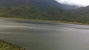 தொடர் மழையால் நெல்லை அணைகளின் நீர்மட்டம் அதிகரிப்பு | Dams in Tirunelveli fill up due to continuous rainfall
