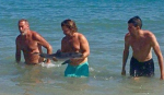 'Selfish' tourists blamed for baby dolphin death