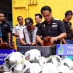 थाईलैंड की सीमा पर वन्यजीव तस्कर पकड़ा गया | Wildlife smuggling attempt on Thailand border foiled