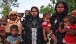 रोहिंगया संकट की आखिर जड़ क्या है? | What you need to know about Rohingya crisis