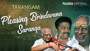 Pleasing Brindavana Saranga