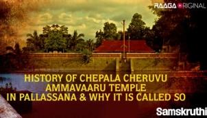 History of Chepala Cheruvu Ammavaaru Temple in Pallassana & why it is called so