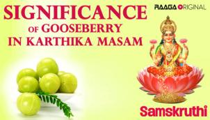 Significance of Gooseberry (Usirikaya) In Karthika Masam