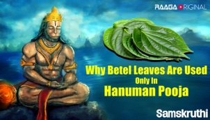 Why Betel Leaves Are Used Only In Hanuman Pooja