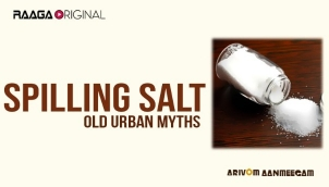 Spilling Salt - Old Urban Myths