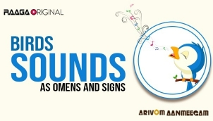 Birds sounds as Omens and Signs